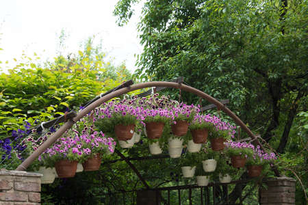 metal arch with baskets of flowers. Decor element. Landscape decoration, landscaping