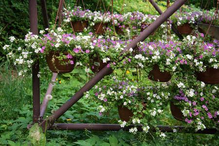 metal arch with baskets of flowers. Decor element. Landscape decoration, landscaping. Stok Fotoğraf