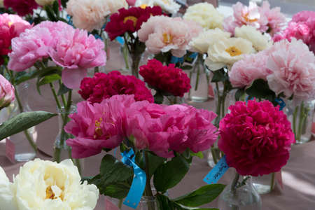 Floral exhibition. Peonies of different colors are in transparent vases. Various varieties of beautiful flowers
