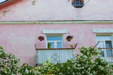 The old pink house has a nice balcony. The balcony is decorated with flowers. Lush, fragrant jasmine bushes grow under the balcony