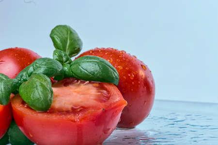 The fresh tomatoes and basil photo