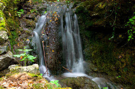 Little waterfall in wood of Valganna (varese) with nature around it