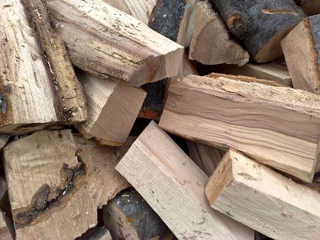 bundle of wood-beech-firing 2