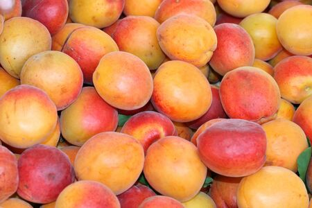 this is a close up shot of bundle of apricots, like nice food background Stock Photo