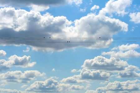 This is a shot of beautiful blue sky with white clouds, and birds on the wire,  like nice backgrounds. Stock Photo