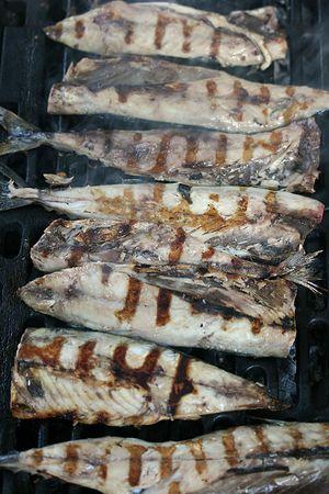 Dies ist eine Nahaufnahme der Schuss von Makrele Fisch auf dem Grill