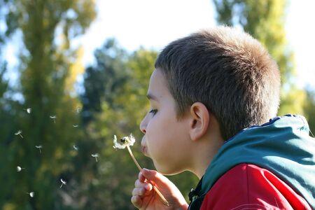 Ein kleiner Junge, weht der L�wenzahn