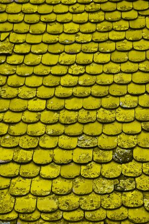 This is a background, from old yellow tile on the old roof. Stock Photo - 7570718