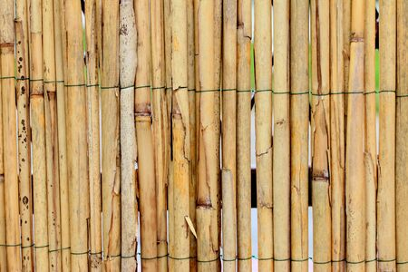 wood backgrounds: Closeup shot of reed, for some nice background. Stock Photo