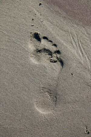Closeup shot of footprint in a beach, on the river Danube