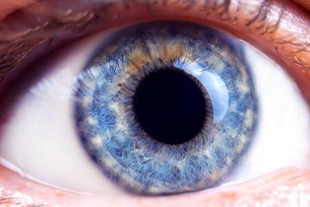 Macro image of human blue eye. Close-up details