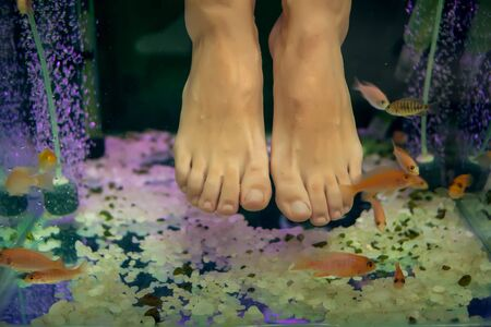Fish spa pedicure wellness skin care treatment - Spa, people and body care concept Stock Photo