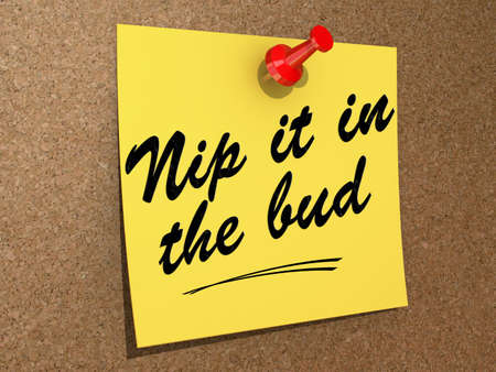 A note pinned to a cork board with the text Nip It in the Bud. Stock Photo