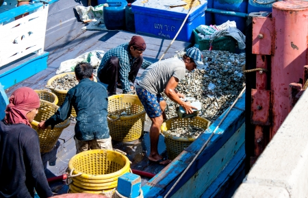 thier: fishermen and thier clam