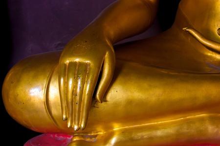 Buddha hand Reklamní fotografie - 19792556