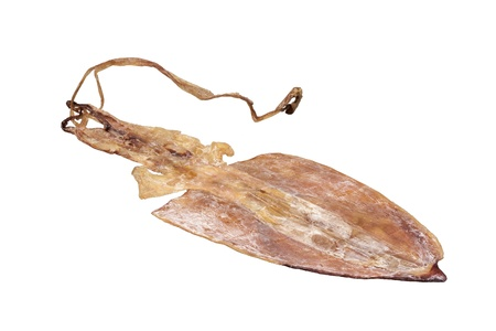 Isolated Dried squid photo