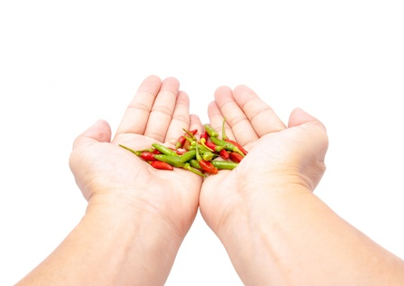 fresh chilli in hands on white background