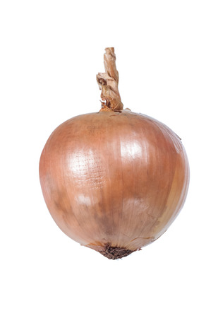 onion blub isolated on white