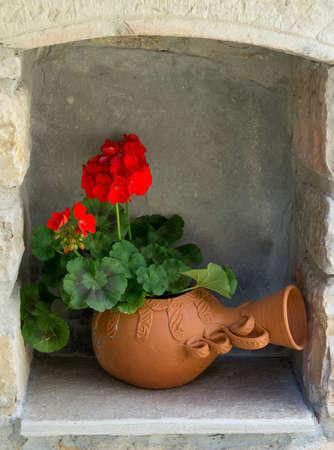 geranium color: Geranium flower.