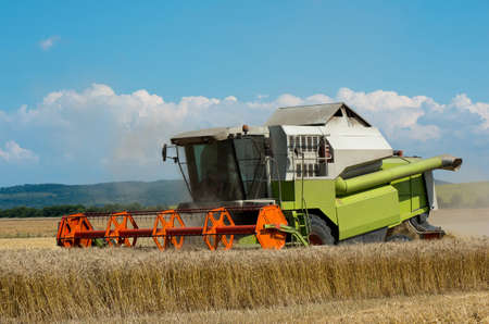 Harvest. Harvesting of wheat with a combine harvester. Stock Photo