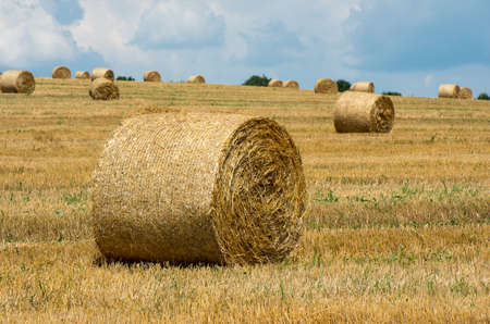 bales: Bales of straw. Levels with bales.