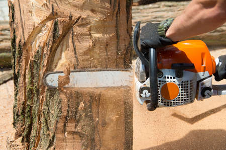 Master makes the saw wood sculpture Foto de archivo