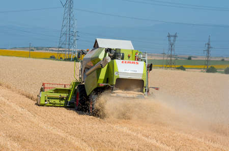 Harvester machine to harvest wheat field working. Reaping wheat field working.