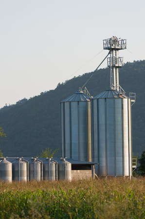 silo for keeping animal feed