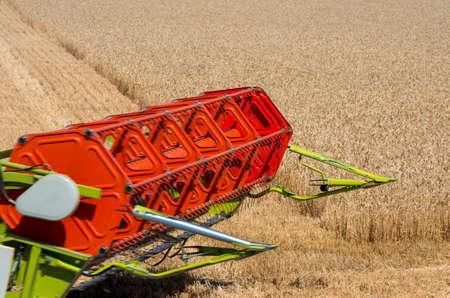 harvests wheat on field 스톡 콘텐츠