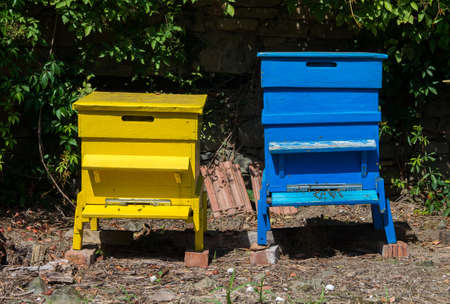 Wood colourful hives for bees. Beekeeping agriculture. 스톡 콘텐츠