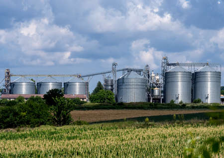 Grain elevator silos. Concept of agriculture food production.