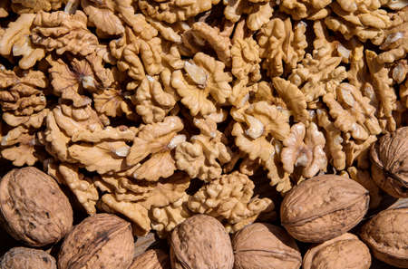 Healthy food. Walnuts whole and nuts.