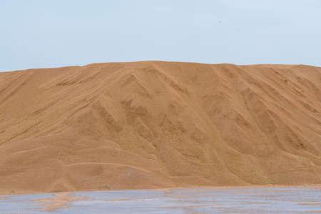large pile of barley