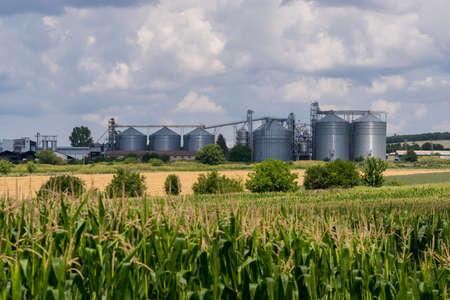 Agricultural Silo. Set of storage tanks
