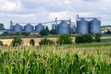 Defocused silos in a farmland.