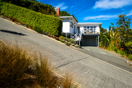 Baldwin street - the steepest street in the world, Dunedin, New Zealand