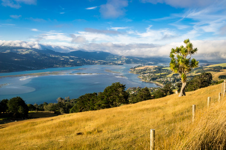 Landscape of an overview from a hill in New Zealand Reklamní fotografie
