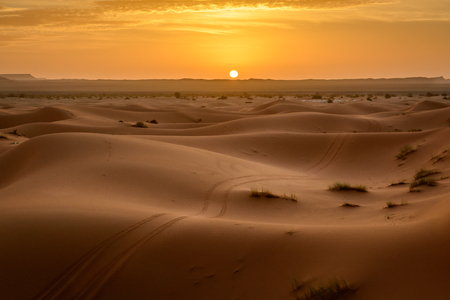 Sunrise at Erg Chebbi sand dune of Sahara with ATV tyre markings on the sand, Merzouga, Morocco