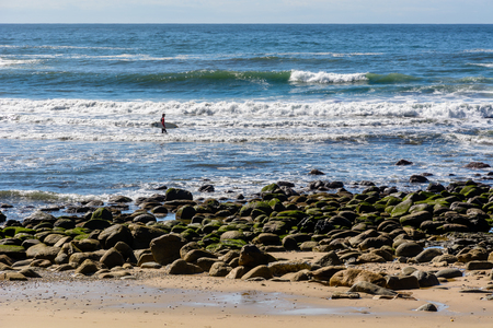 A surfer entering the ocean in Victoria Bay near Wilderness, South Africa