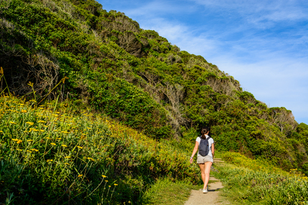 A young woman walking through a green path in Storms River national park in South Africa. Trekking on the Waterfall trail in summer. Reklamní fotografie