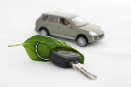 eco car: Groene bladeren en een auto. Ecologie conceptie. Witte geïsoleerde Stockfoto