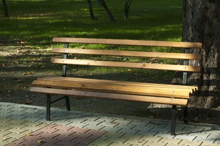 Park bench to tree Stock Photo - 11114407