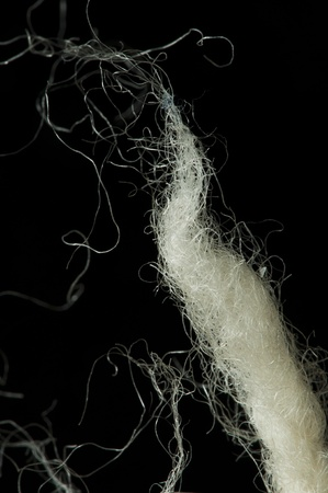 White wool fibers closeup. Black isolated photo