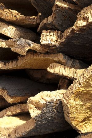 Cork crust. Natural piece of wood photo