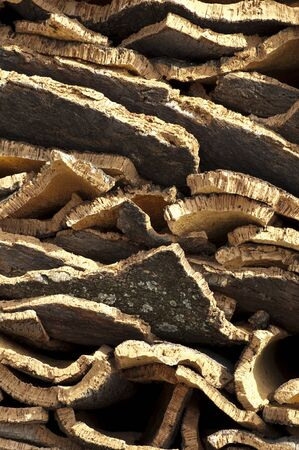 Cork crust. Natural piece of wood Stock Photo - 14930712
