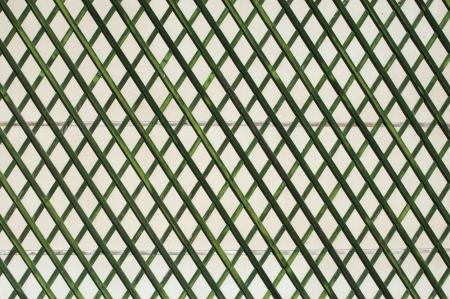 entrance arbor: Green wooden lattice wall.
