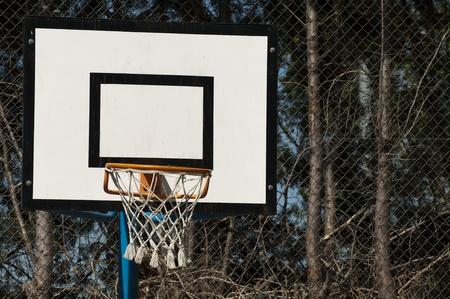 Basketball court and basketball basket photo