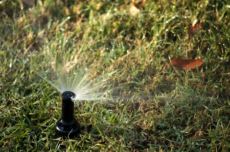 automatically: Watering the garden automatically