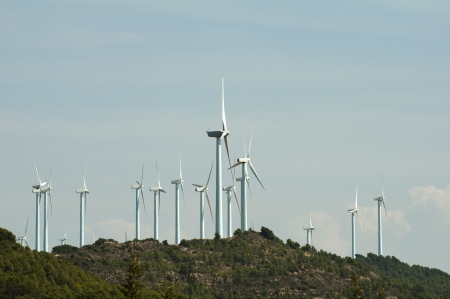 Wind generators on the top of the mountain photo