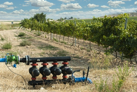Water pumps for irrigation of vineyards.